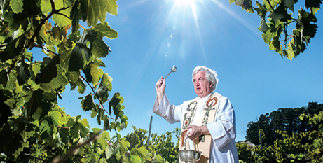 Fr Paul Fyfe SJ blesses the grapes at Sevenhill, Clare Valley (Nat Rogers)