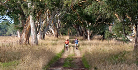 The Aussie Camino is a homegrown pilgrimage trail (Camino Australia)