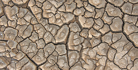 Drought is affecting rural communities from northern Victoria to Queensland (Bigstock)