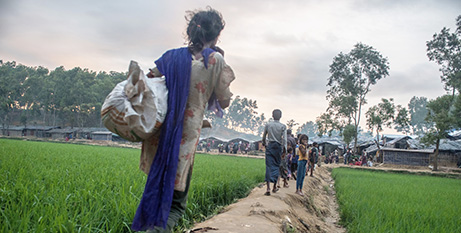 Rohingya refugees walk into a camp in  Bangladesh (Tommy Trenchard)