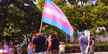 The flag of the transgender movement (SBS News/Flickr/Ted Eytan)