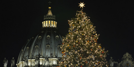 The 28m Christmas tree at the Vatican (CNS/Paul Haring)