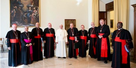 Francis with the Council