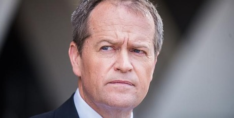 Opposition Leader Shorten
