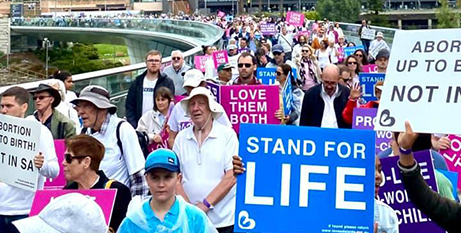 The Walk for Life in Adelaide on Saturday (Facebook/Love Adelaide)