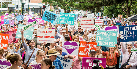 The March for Life in Brisbane on Saturday (The Catholic Leader/Alan Edgecomb)