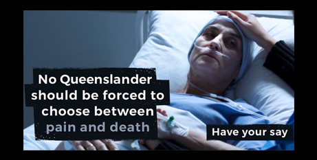 The Another Option campaign encourages Queenslanders to tell their MPs to increase access to palliative care across the state before introducing euthanasia (CHA)
