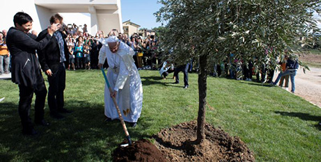 Pope Francis plants a tree during his visit to the New Horizons Community in Frosinone, Italy (CNS/Vatican Media via Reuters)
