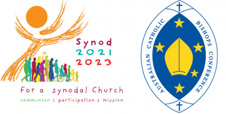 """Pope Francis says the synod """"means walking on the same road, together"""" (Supplied)"""