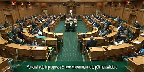 NZ parliamentarians vote on the End of Life Choice bill yesterday (NZ Parliament)
